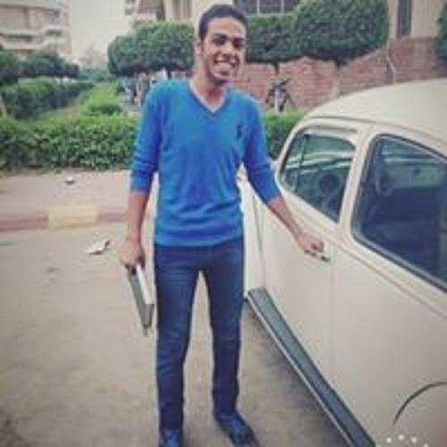 Hussein Abd Elbaset's avatar