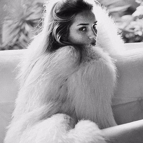 Danielle Beth's avatar