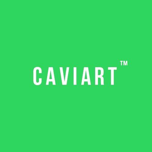 CAVIART's avatar