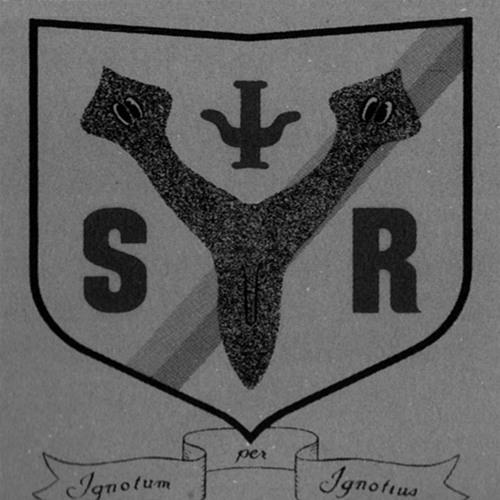 S/V\R's avatar