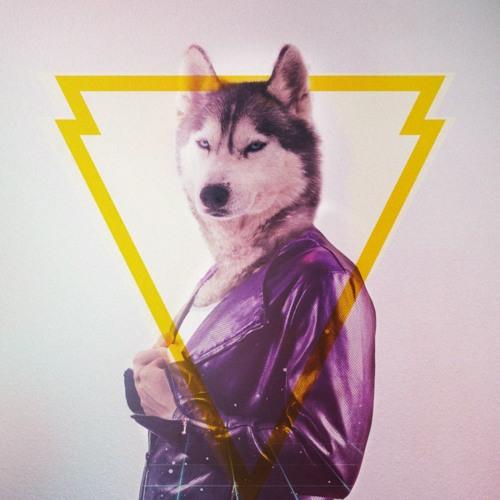 Florida Wolf's avatar