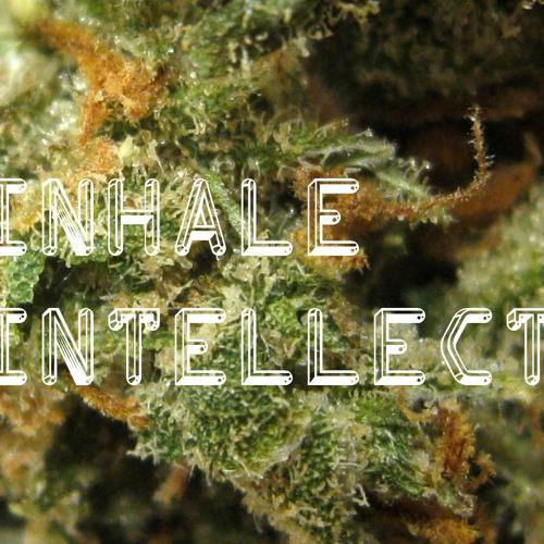 Inhale Intellect's avatar
