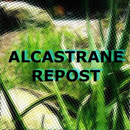 ALCASTRANE REPOST's avatar