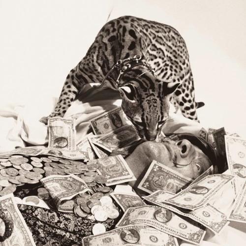 Hip Hop Ocelot's avatar