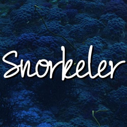 Snorkeler's avatar