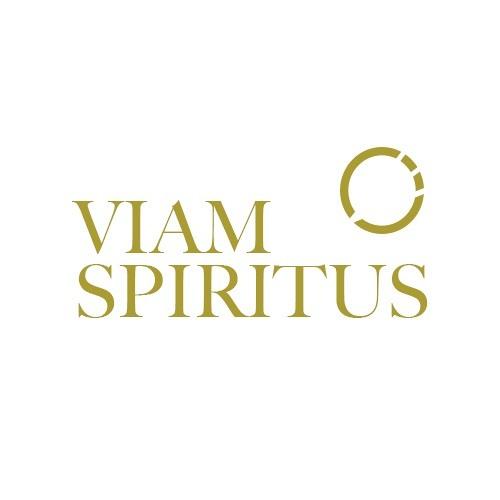 Viam Spiritus's avatar