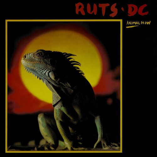 Ruts D.C.'s avatar