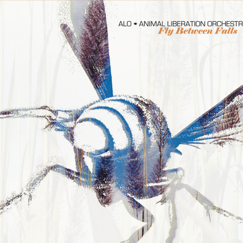 ALO (Animal Liberation Orchestra)'s avatar