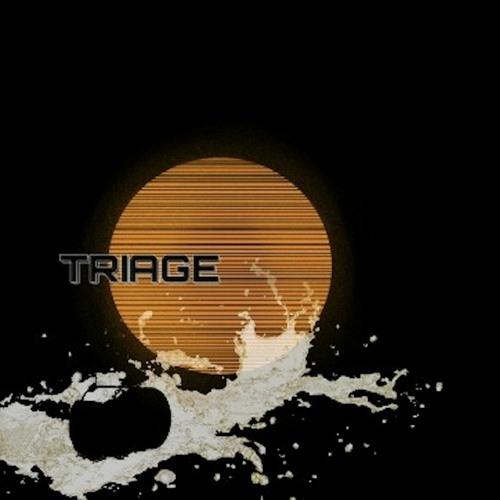 triagemuzic's avatar