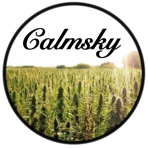 Calmsky's avatar