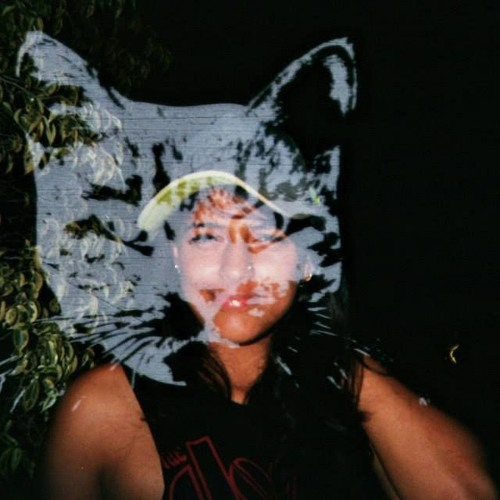 Vishaka Karanth's avatar