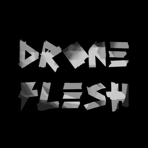 Drone Flesh's avatar