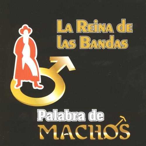 Banda Machos's avatar