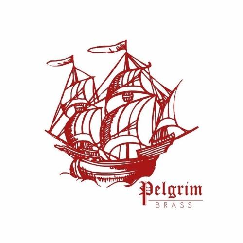 Pelgrim Brass's avatar