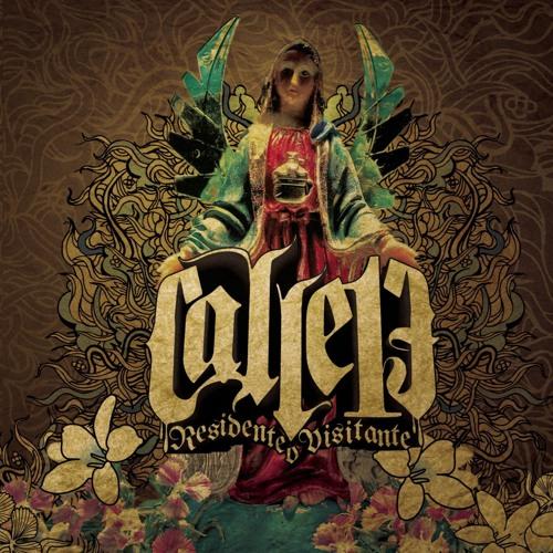 Calle 13's avatar