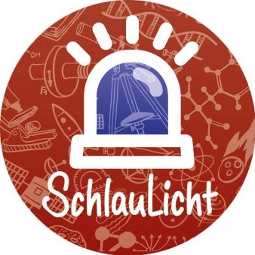 SchlauLicht's avatar
