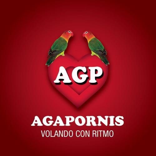 Agapornis's avatar
