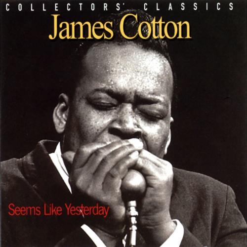 James Cotton's avatar
