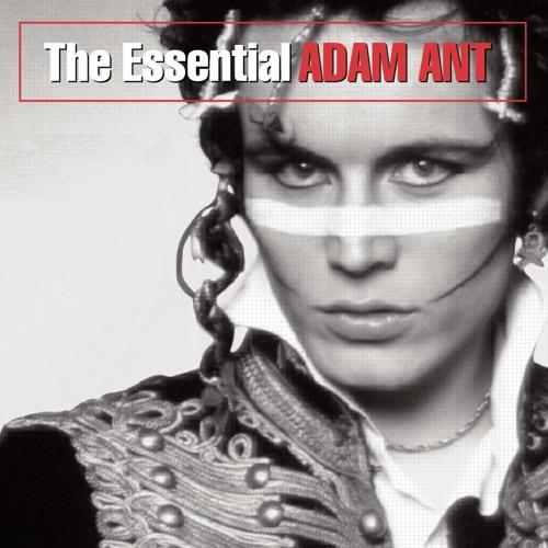 Adam Ant's avatar