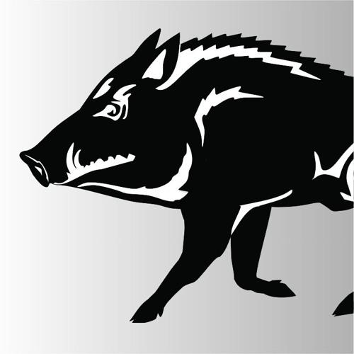 deZordine's avatar