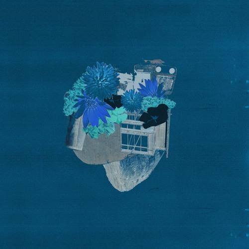 ANIMAS's avatar