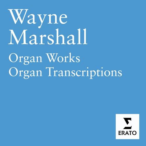 Wayne Marshall's avatar
