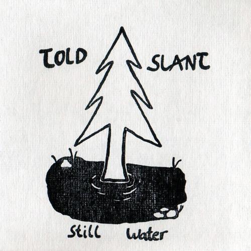Told Slant's avatar
