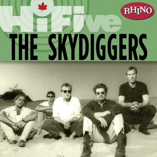 The Skydiggers's avatar