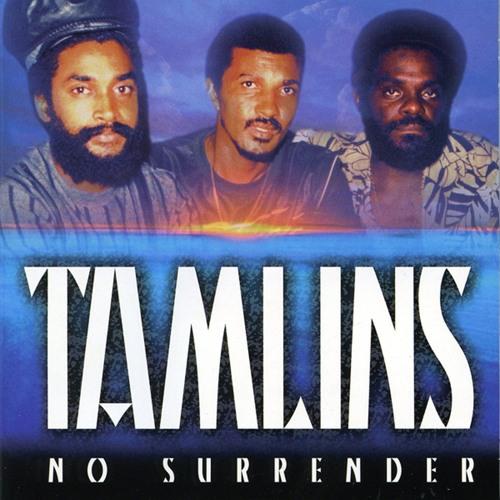 Tamlins's avatar