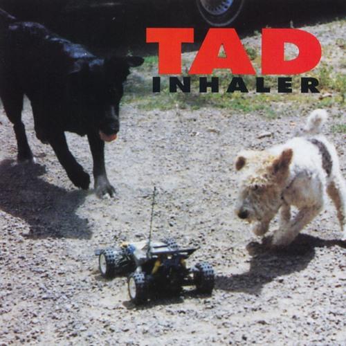 Tad's avatar