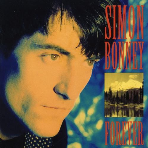 Simon Bonney's avatar