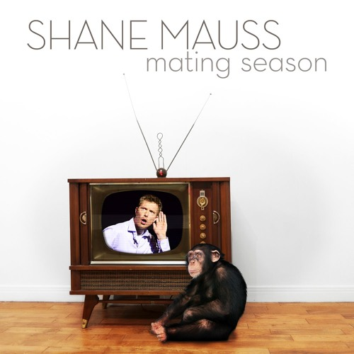 Shane Mauss's avatar