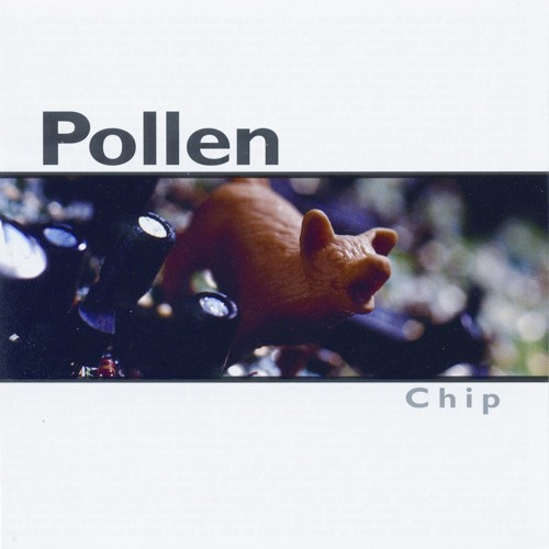 Pollen's avatar