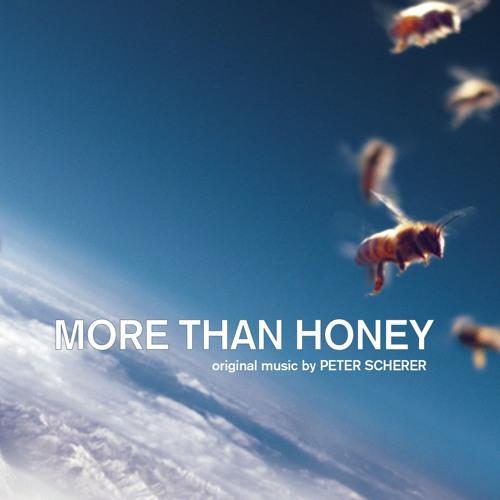 Peter Scherer's avatar