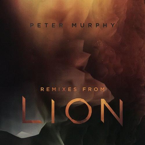 Peter Murphy's avatar