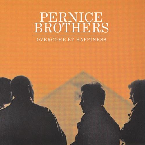 Pernice Brothers's avatar