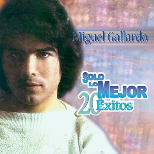Miguel Gallardo's avatar