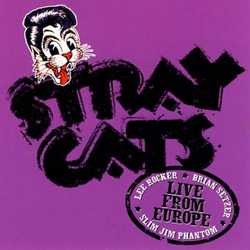 Stray Cats's avatar