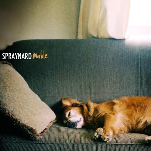 Spraynard's avatar
