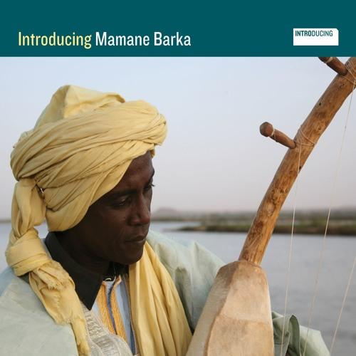 Mamane Barka's avatar