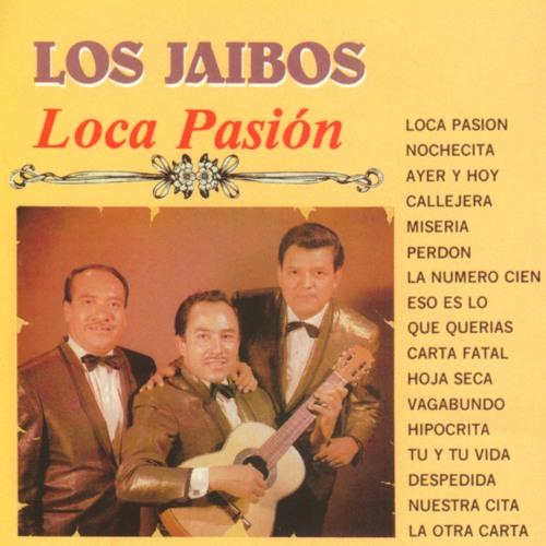 Los Jaibos's avatar