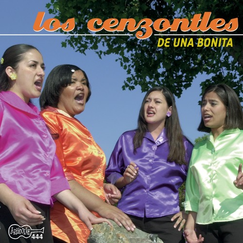 Los Cenzontles's avatar