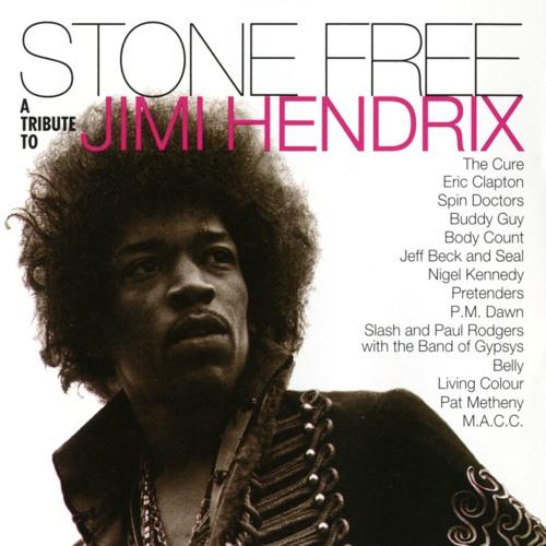 Jimi Hendrix Tribute's avatar