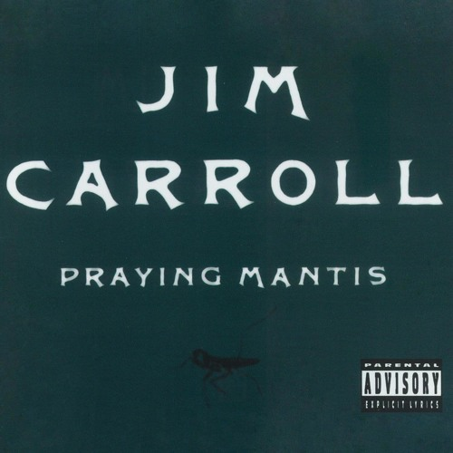 Jim Carroll's avatar