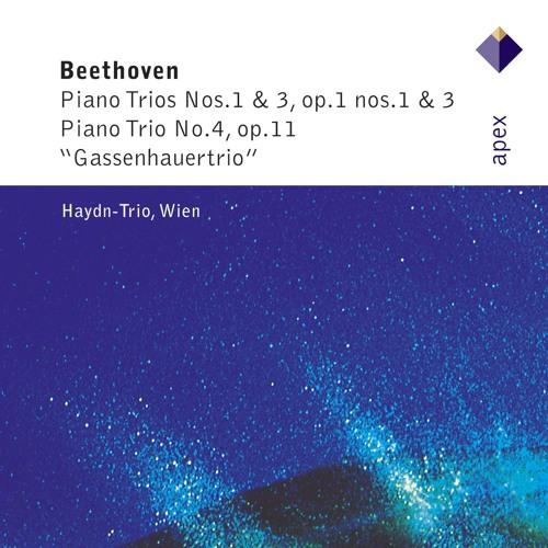 Haydn Trio Wien's avatar