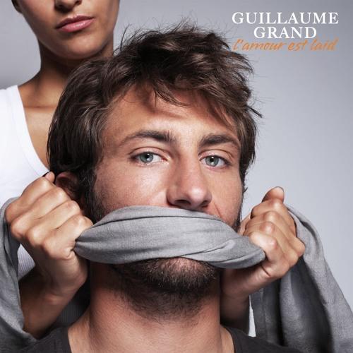 Guillaume Grand's avatar