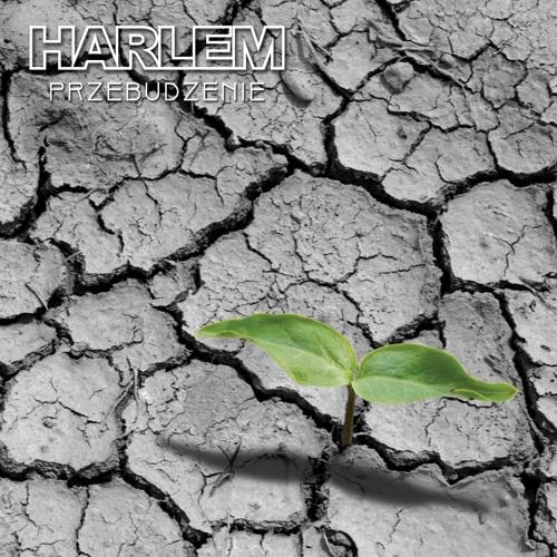 Harlem's avatar