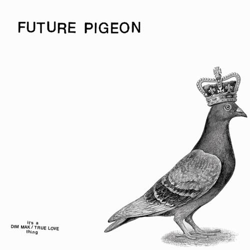 Future Pigeon's avatar