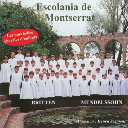 Escolania de Montserrat's avatar
