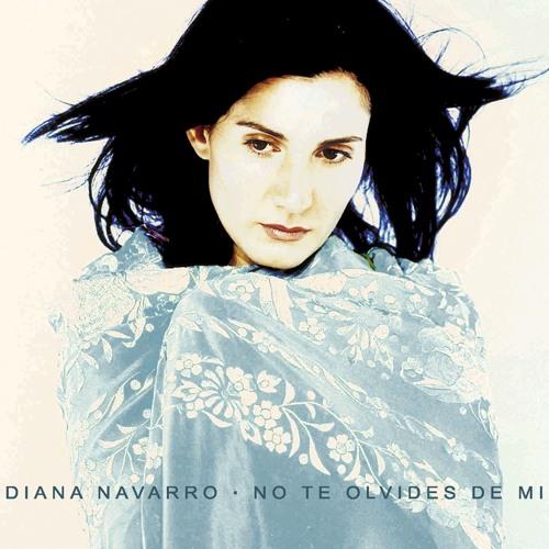 Diana Navarro's avatar